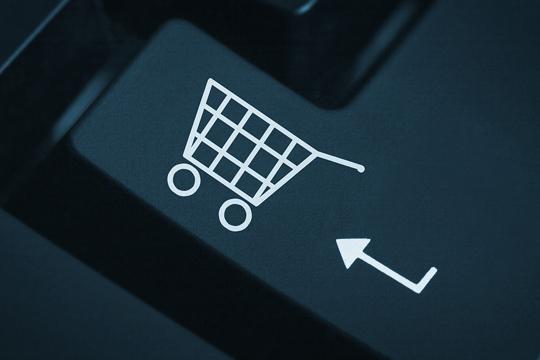Ecommerce Web Solutions - techtronicx.com